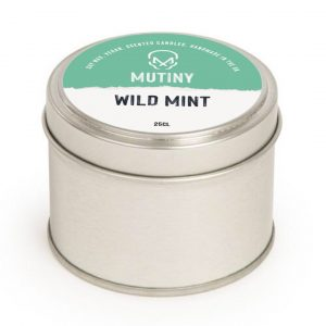Candle - Wild Mint